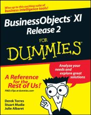 BUSINESSOBJECTS XI RELEASE 2 FOR DUMMIES - Torres Derek