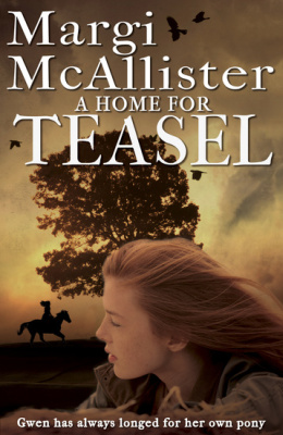 A HOME FOR TEASEL -  Mcallister