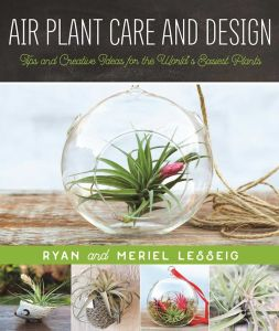 AIR PLANT CARE AND DESIGN - Lesseig Ryan