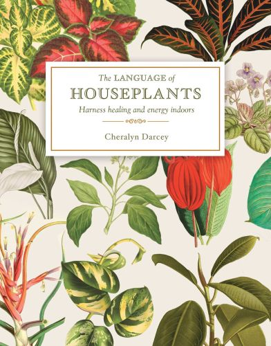 THE LANGUAGE OF HOUSEPLANTS - Darcey Cheralyn