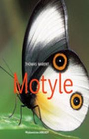 MOTYLE - Thomas Marent