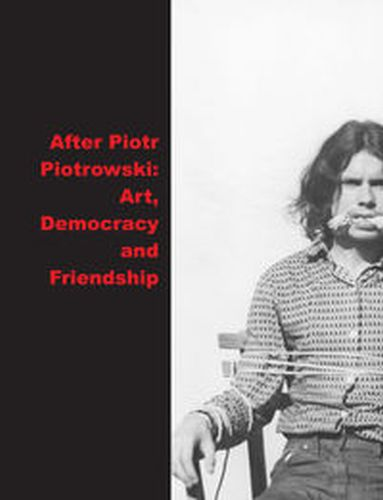 AFTER PIOTR PIOTROWSKI ART. DEMOCRACY AND FRIENDSHIP - Magdalena Radomska